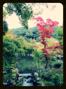 Autumn colors and a pagoda in the background at Eikan-do